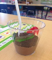 """""""Dirt"""" snack helped us understand more about the importance of soil."""