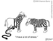 What are some risks of stress?