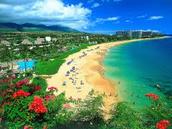 Beaches in Hawaii, Aloha