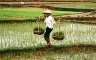 Vietnamese People (Rural)