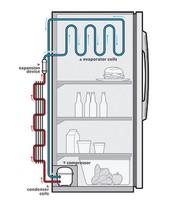 Refrigderator