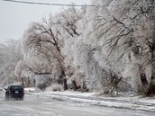 coated ice on the roads and trees