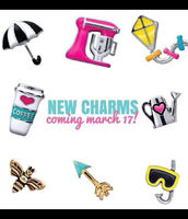 Darling awesome new charms!