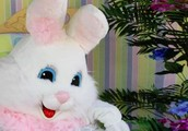 Easter Bunny's Extreme Egg Hunt at Antioch Park