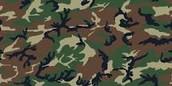 Trisha Camouflage land