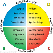 Modes of the Brain