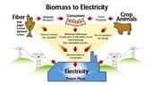Bio Mass Energy