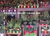 Advice To Enjoy Perfect Flower Shops