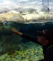 TN Aquarium