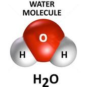 A water molecule