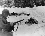 Frozen Soldiers