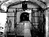 Mental/Prison Reform