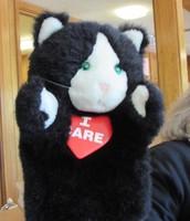 I-Care Cat Puppet