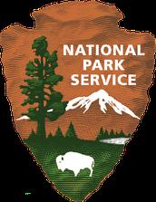 Federal Internship
