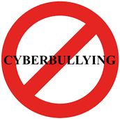 #6 Don't cyberbully others