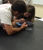 Earthworm lab in Biology!
