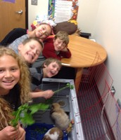 Having fun with our School pets!