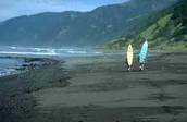 Surfers Domain