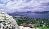 8. Hobart