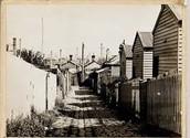 Housing 1800's