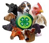 Fair Livestock Reminders