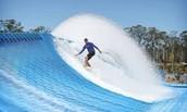 Surfs 'UP'