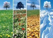 Seasons caused by The Sun