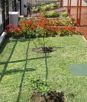 Galería frente y jardín
