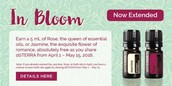 Extended through May 15th
