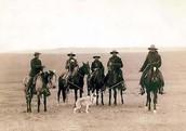 Cowboys!!!!