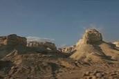Some landscape