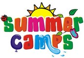 AIG Summer Camp Survey