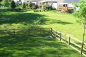 Setting Image 2 - Backyard