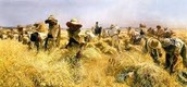 La Reforma Agraria Liberal