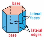 Lateral and Total Surface Area