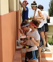 Volunteer Labor