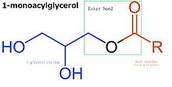 Vegetables Monoglycerides