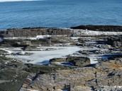 Tide pools in Rocky Intertidal