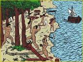 A História do Desmatamento no Brasil