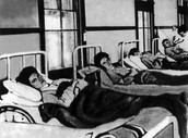 Typhoid history