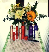 Arbonne Product Offerings: