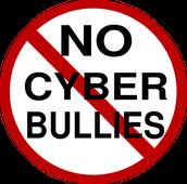 #5 Cyberbullying