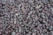 AMAZING Pebbles!!!