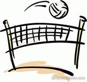 Lady Lions Volleyball Camp