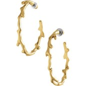 Carobella Gold Hoops