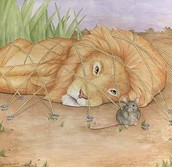 Billy and the Lion
