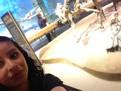 selfie with the dinosaur