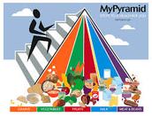 Food Pyramid Comparison
