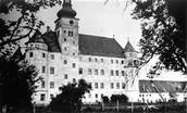 The Hartheim Institute