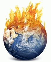 Things Being Done to Prevent Global Warming
